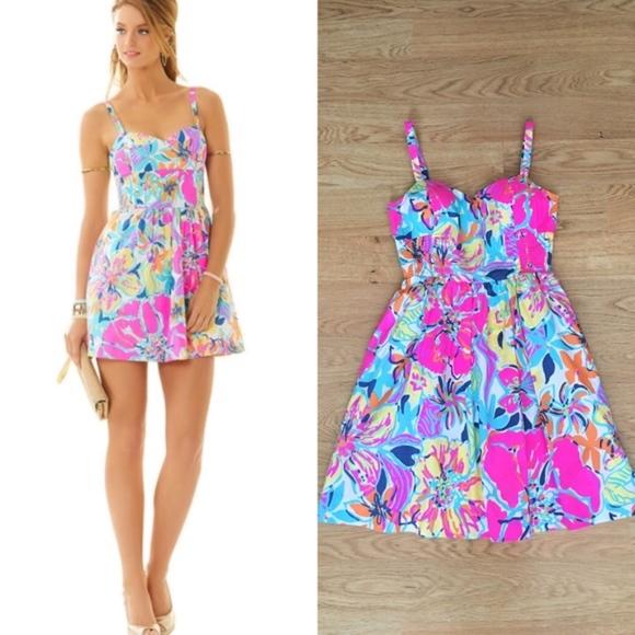 6694ab83a3b40e Lilly Pulitzer Dresses & Skirts - Lilly Pulitzer Christine Dress